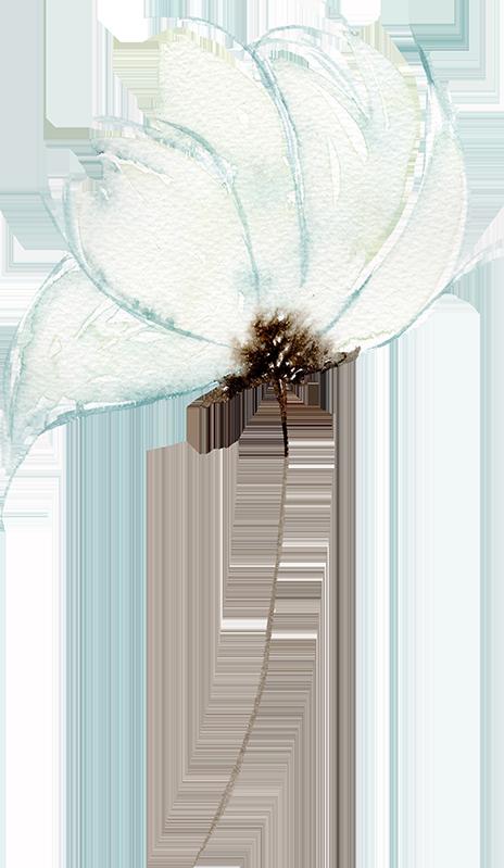 fleur_droite_1